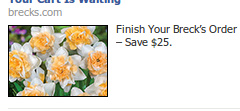 The Perfect Use of Custom Audiences Through Facebook Ads